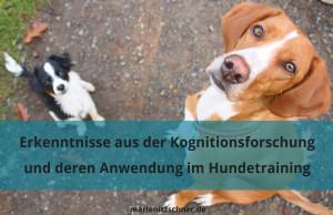Wissenschaftliche Erkenntnisse zu Lernen und Kognition sowie deren Anwendung im Hundetraining (Wochenendseminar)